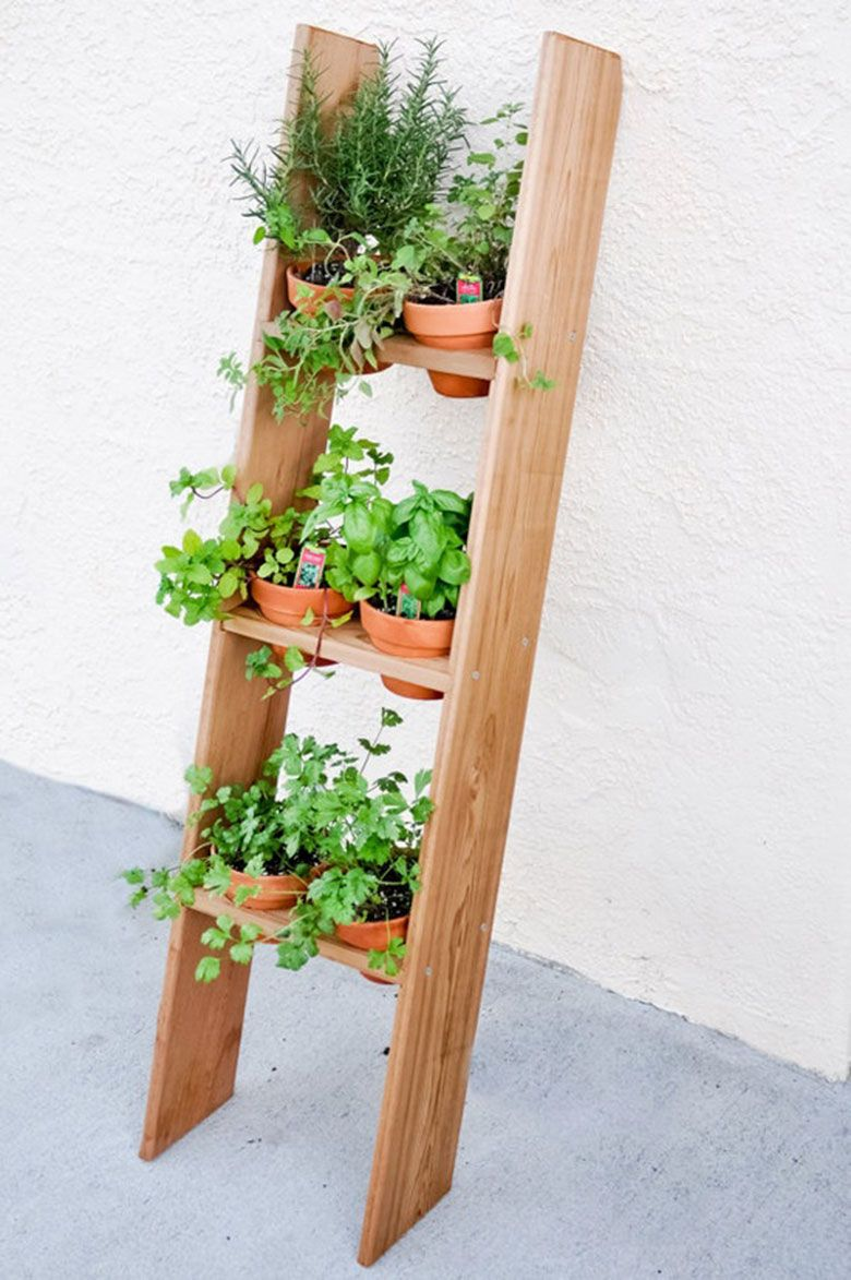 Como Fazer Uma Mini Horta Em Sua Varanda Ou Cozinha  ~ Horta De Temperos Na Cozinha